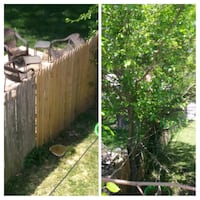 Diego landscaper and tree cut available Prince George's County, 20785