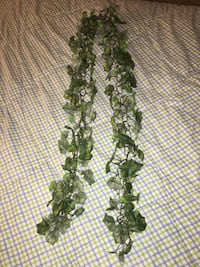 6 foot strand of artificial ivy Parkville, 21234