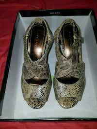 Ann Taylor Shoes North Attleborough, 02760