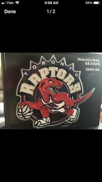 Vintage Raptors Light Barrie