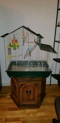 Cage and Budgie bird.