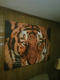 Giant tiger canvas picture Chester, 23831