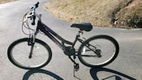 Girls DBX Mountain Bike with 24in tires
