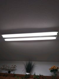 Light fixure with bulbs included