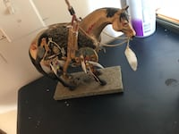 brown and black horse figurine 41 km