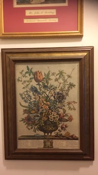 Framed Botanical Print New York, 10463