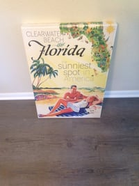 Florida the sunniest spot in America painting New Port Richey, 34652