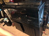 50 Gallon Fish Tank w/stand and accessories Germantown, 20876