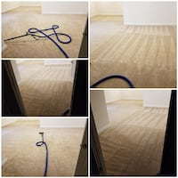 Commercial carpet cleaning Washington