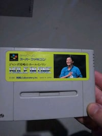 HAL'S HOLE IN ONE GOLF sfc super famicom snes