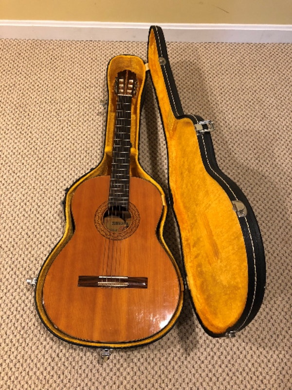 Guitar with carrying case