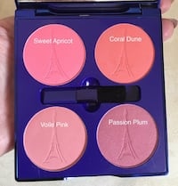 4 Color blusher palette by Acti labs Hopewell Junction, 12533