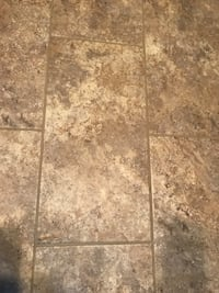 Shaw LVT + grout Goodfield