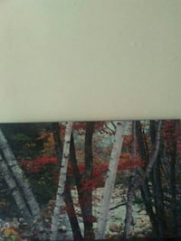 forest painting London, N6A 2T9