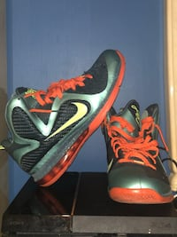 Size 11 Lebron Cannon Silver Spring, 20906
