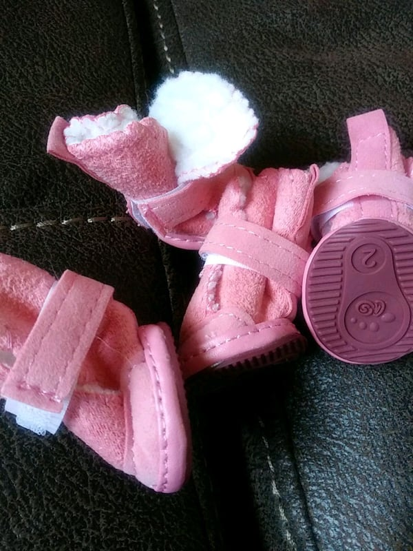 Dog witer boots 061fc588-9620-4843-a75f-5cfc172f10eb