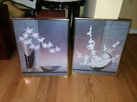 two white petaled flower paintings Temple Hills, 20748