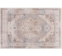 Rutherford Area Rug Chicago, 60616