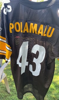 Troy Polamalu Jersey Holland, 18966