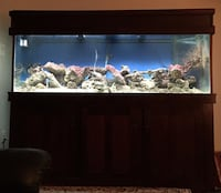 180 gallon fish tank with live rock and cherry stand Herndon, 20170