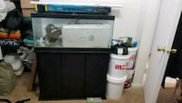 40 gallon fish tank and accessories. Davenport, 52803