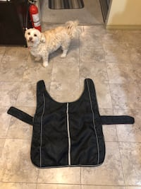 Dog jacket Nanaimo, V9X 1C3
