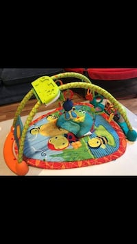 baby's multicolored activity gym Coquitlam, V3B 4T4