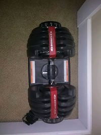 Bowflex adjustable dumbells. Cost $500. Like new Surrey, V3Z