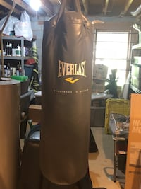 Everlast Heavy Bag great shape with heavy chain to hang.