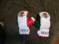 Mexico Boxing Gloves Sacramento, 95817
