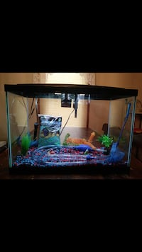 20 gal fish tank with acc North Providence