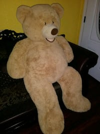 Teddy bear big  Lancaster
