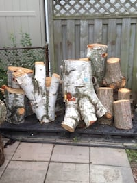 White birch and Austrian Pine Wood - Need it gone ! Scugog, L9L 1J6