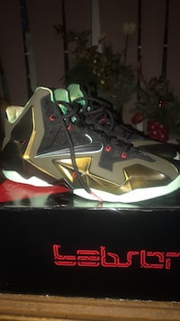 Brand New Lebron 11 kings Pride Size 12