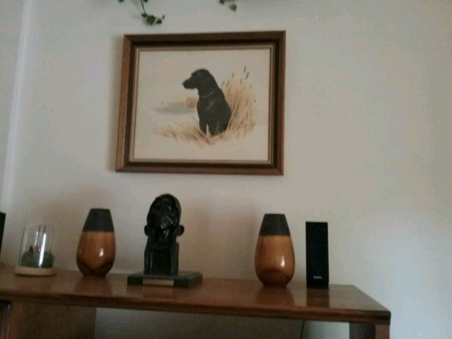 Photo Black Lab Water color