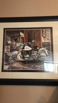 brown and white cruiser motorcycle painting Odessa, 33556