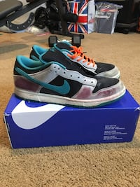 Chrome ball bike sb dunk low 11.5 Springfield, 22153