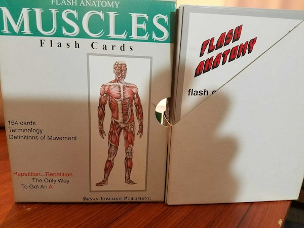 Used Flash Anatomy Muscles Flash Cards For Sale In Downers Grove Letgo