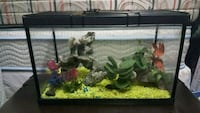 rectangular black framed fish tank London, N6E 2B2