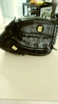 Baseball mitt Port Richey, 34668