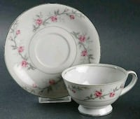 white and pink floral ceramic teacup and saucer Hatboro, 19040