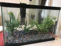 20 Gallon aquarium tank comes with gravel decoration plants and filter in mint condition I bought it July 2017 for $169 for everything asking for $50
