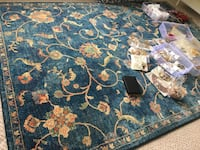 Area rug (moving sale!!) Brampton, L6T