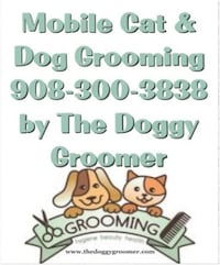 Cat grooming Mount Pleasant