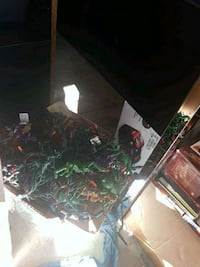 Box of Halloween lights all for $5 Billings, 59101