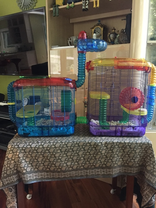 two blue and red hamster cages