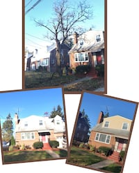 tree removal Moorestown