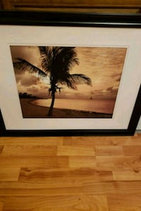 brown wooden framed painting of coconut tree Manassas, 20109