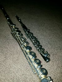 Offering: Flute or Piccolo lessons Brewster, 10509