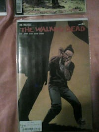 The Walking Dead issue #173 Las Cruces, 88001